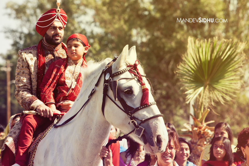 elegant groom on white horse