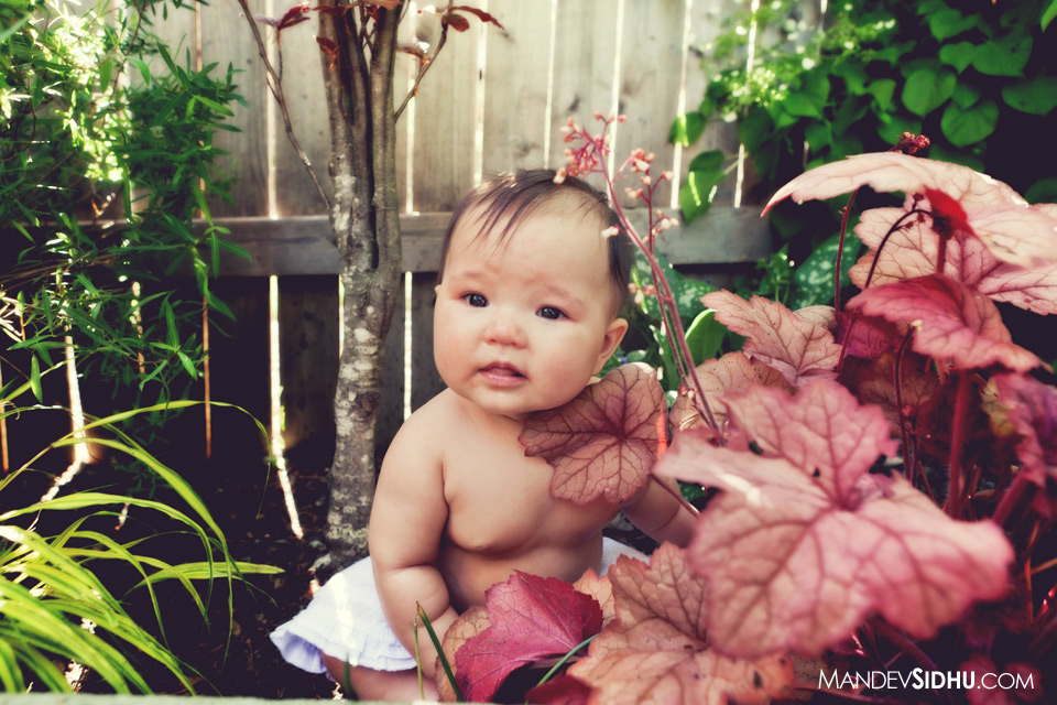 adorable newborn baby girl sitting in flowers