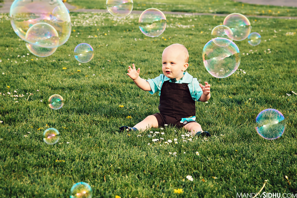 bubbles floating by Winston as he sits in the grass