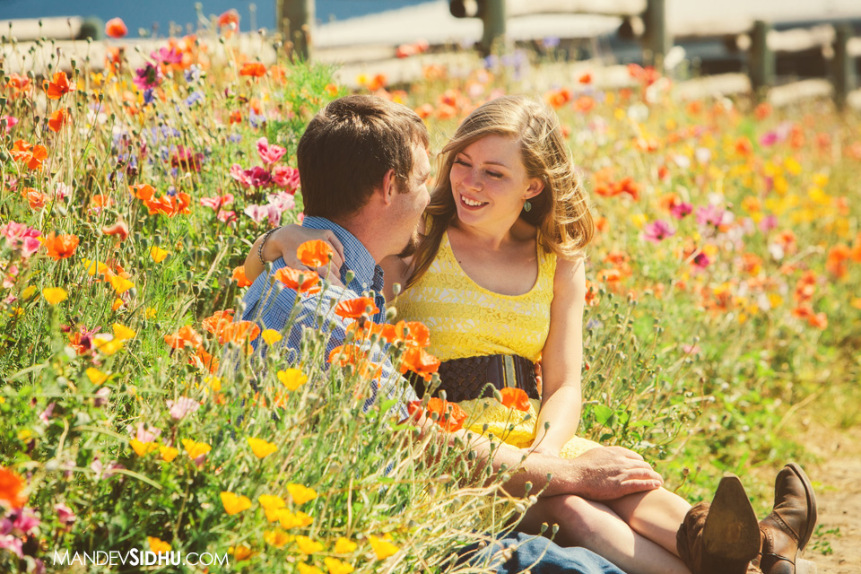 cute couple sitting in wildflowers for engagement photos