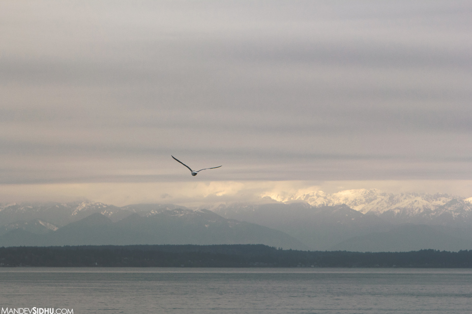Olympic Mountains as seen from Ferry