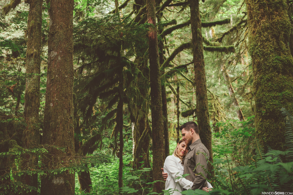 Loving engagement photo in trees – Pacific Northwest