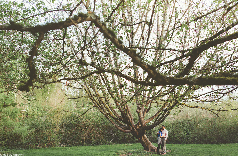 couple standing under tree at washington arboretum for photo session