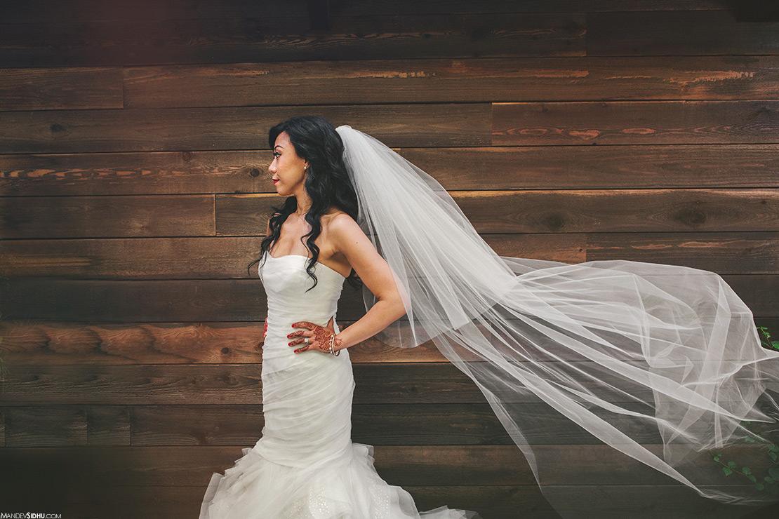 Portrait of Bride in wedding dress
