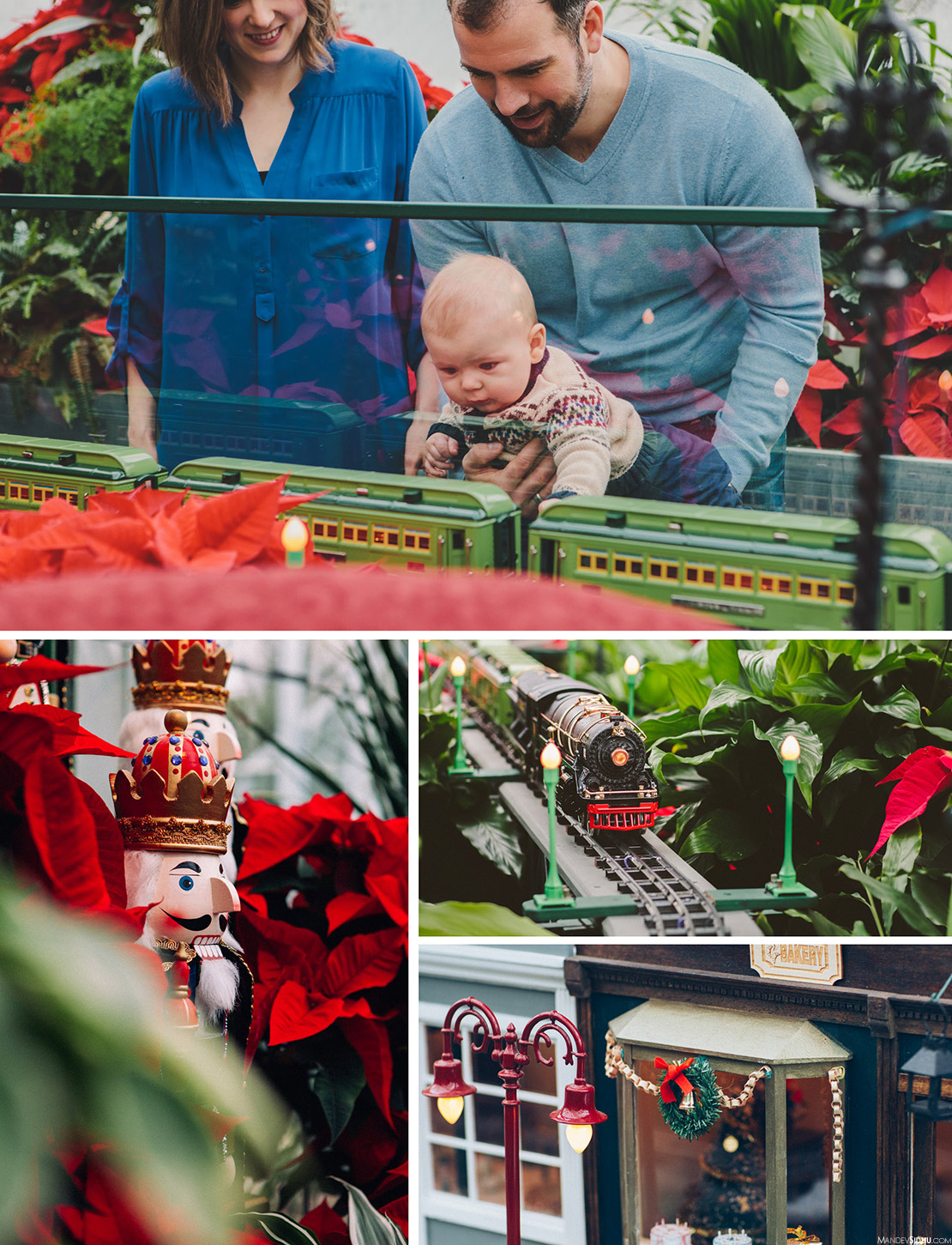 Christmas Family Photos at Volunteer Park Conservatory
