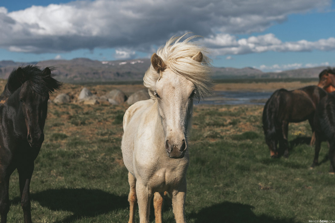 Mandev Sidhu in Iceland