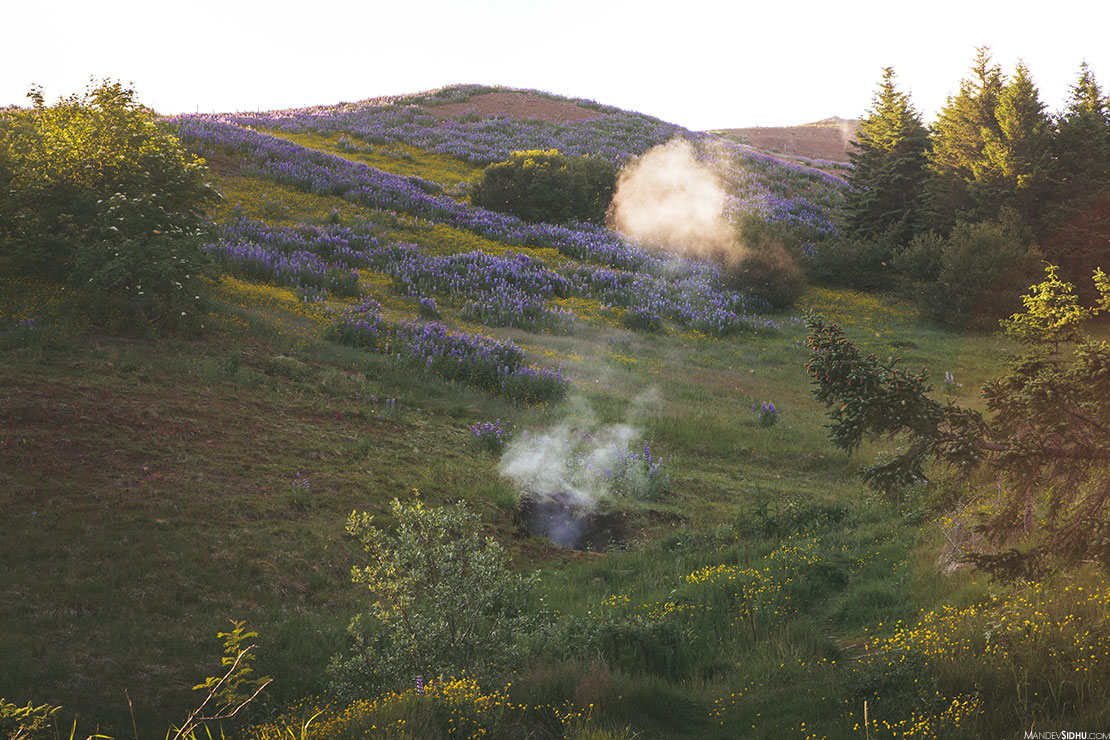 Icelandic Geothermal steam vents